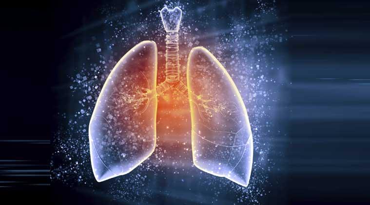 lungs-main