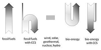 Carbon_flow